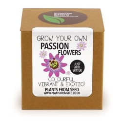 Kit orto semi passiflora grow plant