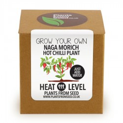 kit orto semi naga morich grow plant